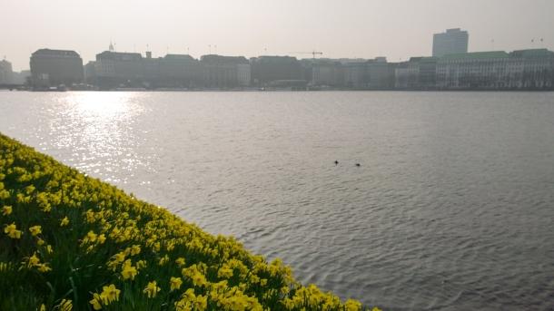 2014-04 GTUG Hamburg-2