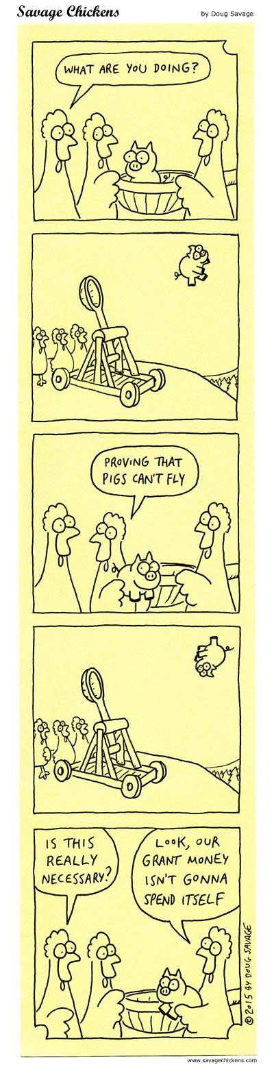 chickencatapult